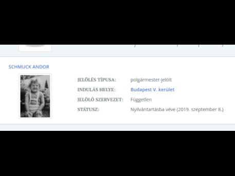 Képrészlet: valasztas.hu