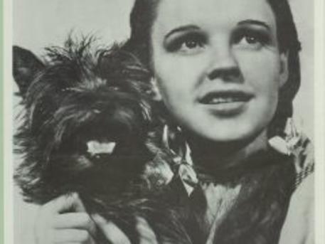 Judy Garland az Oz, a nagy varázslóban